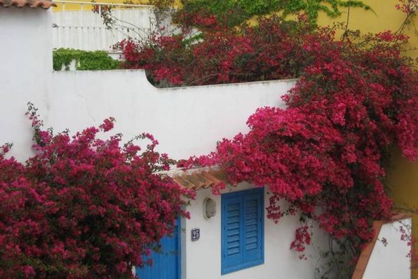 mediterranea guesthouse b&b